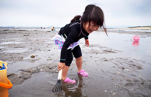 春から初夏にかけてはアサリやシジミの潮干狩りを家族で楽しむ風景