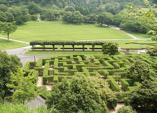 徳島県立神山森林公園 イルローザの森